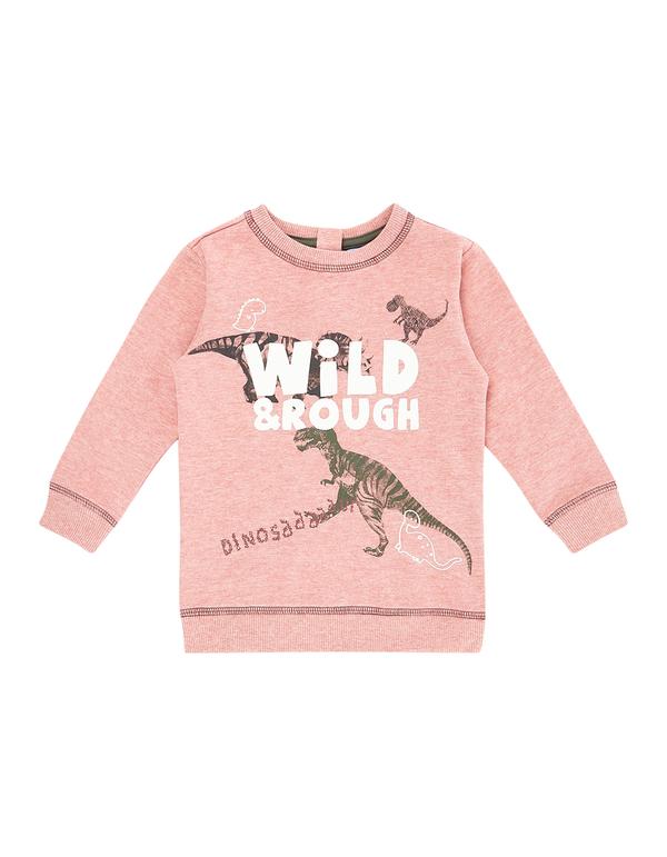 Baby Sweatshirt mit Dinosaurier-Print