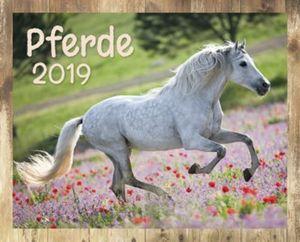 Pferde Kalender-Set 2019, 8tlg.