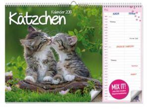 Kätzchen A3 Duo Kalender 2019
