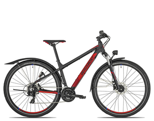 Bergamont Revox 3 EQ 29 2019 | 45 cm | black/red/blue