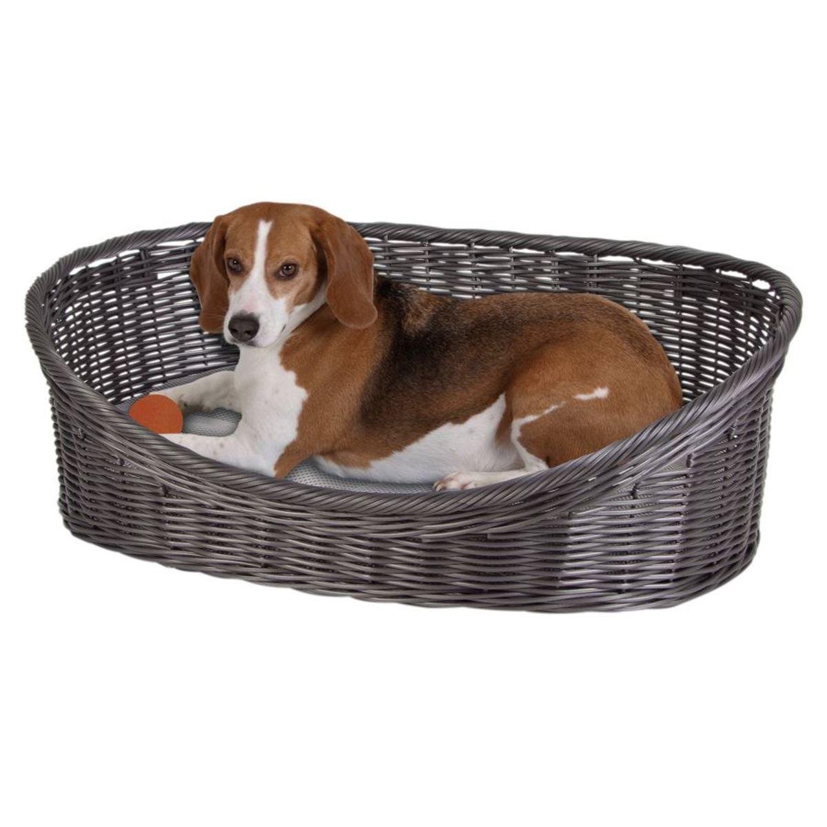 Bild 1 von Hundekörbchen mit Kissen Rattanoptik Gr. XL 63,5x21,5x47,5cm
