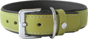 Das Lederband Hundehalsband Amsterdam, Lime / Lava, Breite 35 mm / Länge 55 cm