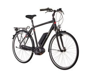 ORTLER-Herren-E-Bike »City Wien«