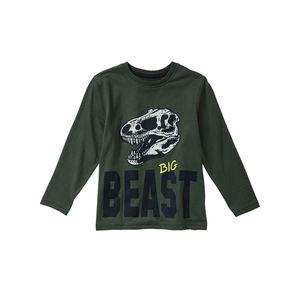Kids Jungen-Shirt mit Dino-Aufdruck