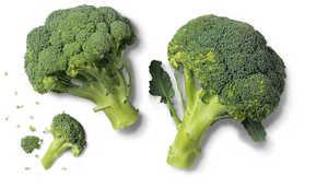 spanischer/italienischer Broccoli