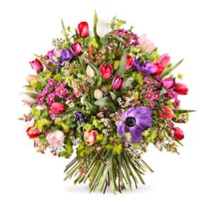 Blütenzauber - | Fleurop Blumenversand