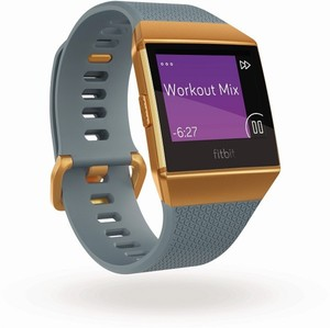 Fitbit Smart Watch Ionic ,  schieferblau/kupfer