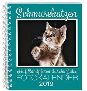 Schmusekatzen Fotokalender 2019