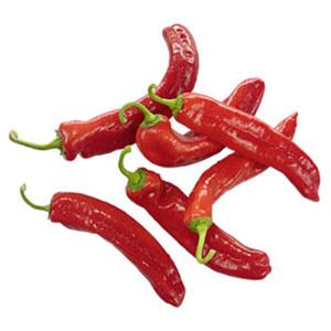Marokko/Spanien Paprika, rot spitz Kennzeichnung siehe Etikett, jede 500-g-Packung