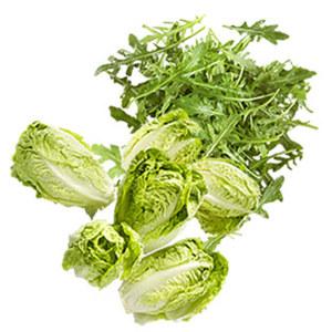 Spanien Salatherzen, grün, 2er oder Italien Rucola Salat 125 g Kennzeichnung siehe Etikett, jede Packung/Schale