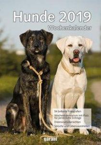 Wochenkalender Hunde 2019