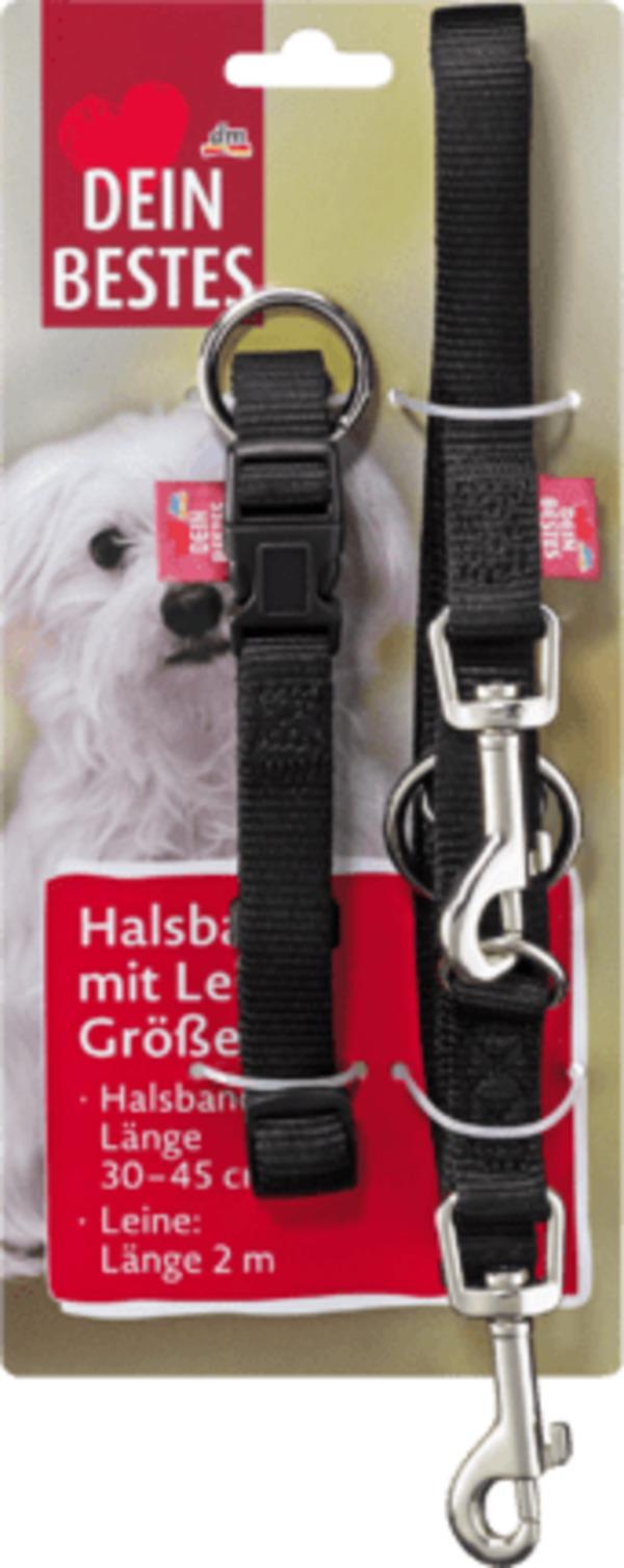 Dein Bestes Zubehör für Hunde, Halsband mit Leine Größe S