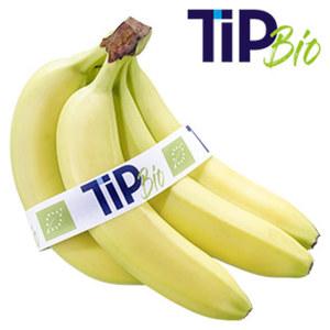 TiP Bio Bananen gepackt mit Banderole, jede 750-g-Packung