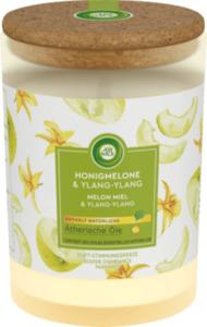 AirWick Duftkerze mit Deckel Honigmelone & Ylang-Ylang