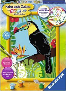 Ravensburger Malen nach Zahlen mit farbigen Motivlinien - Schöner Tukan