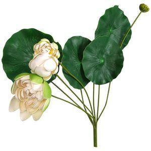 Deko-Teichpflanze Lotus