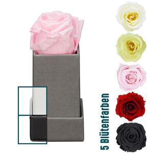 """Rosenbox """"Würfel"""" 1 Rose, 4,5x4,5x9 cm, versch. Varianten"""