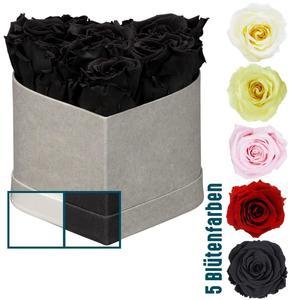 """Rosenbox """"Herz"""" 6 Rosen, 12x9 cm, versch. Varianten"""