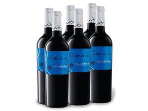 6 x 0,75-l-Flasche El Arte de Vivir Tempranillo Ribera del Duero D.O. trocken, Rotwein