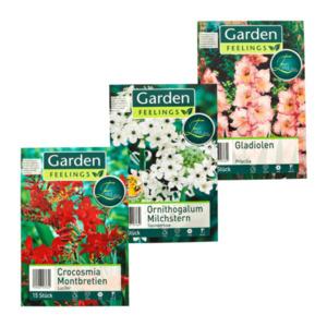 GARDEN FEELINGS     Exklusive Frühjahrsblumenzwiebeln