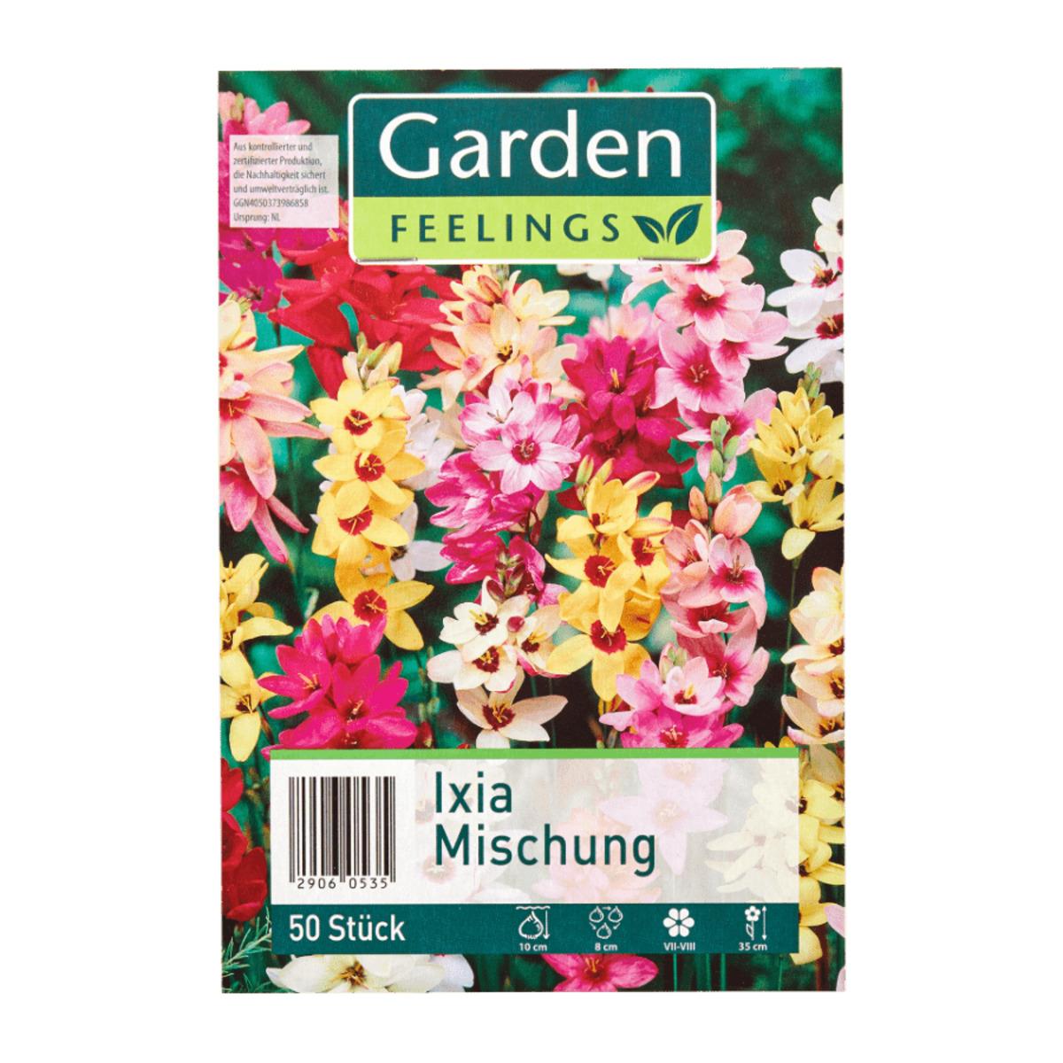 Bild 2 von GARDEN FEELINGS     Frühjahrsblumenzwiebeln