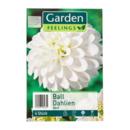Bild 4 von GARDEN FEELINGS     Frühjahrsblumenzwiebeln