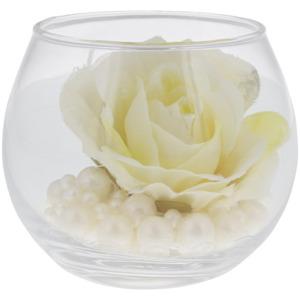 Blume im Glas