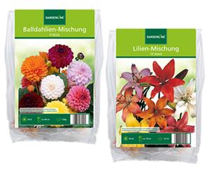 """GARDENLINE®  Blumenzwiebeln """"Frühjahr"""""""