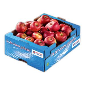 Obst vom Bodensee Äpfel