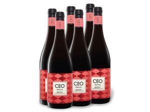 6 x 0,75-l-Flasche Ceo Mencía Bierzo D.O. trocken, Rotwein