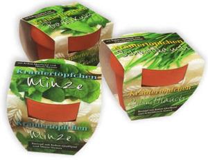 Mini-Tontopf mit Kräuter-Samen