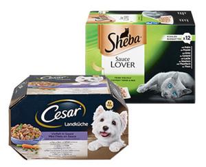 Cesar®/Sheba®  Multipack
