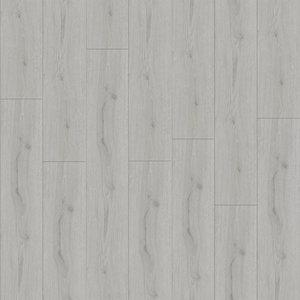 profitan Laminat SURPRISE PLUS - D4802 - Trendeiche Silber - 8 mm