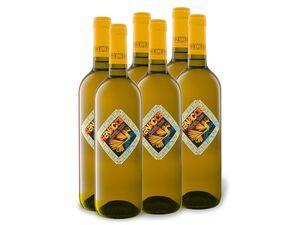 6 x 0,75-l-Flasche Weinpaket Renacce Rueda Verdejo D.O. trocken, Weißwein