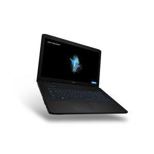 MEDION ERAZER® P7647, Intel® Core™ i5-7200U, Windows10Home, GTX 950M, 256 GB SSD, 1 TB HDD, 8 GB RAM, Core Gaming Notebook (B-Ware)