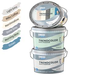 DECO STYLE®  Trendcolor 2,5 l