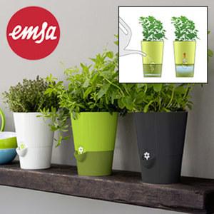 "Übertopf ""Fresh Herbs"" - cleveres Bewässerungssystem - versch. Farben"