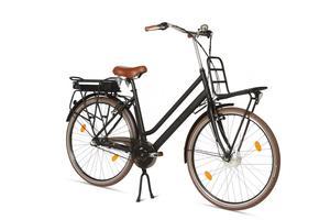 LLobe Hollandbike Rosendaal Lady 28 Zoll