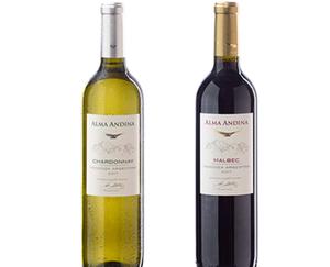 ALMA ANDINA 2018 Argentinischer Wein
