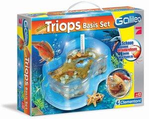 Galileo Triops Basis Set
