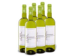 6 x 0,75-l-Flasche Weinpaket Bordeaux Blanc, Weißwein