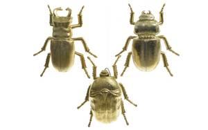 Deko-Käfer in gold, 30 cm