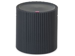 Keter Cool Stool anthrazit