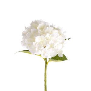 Stielblume Hortensie, L:36cm, weiß