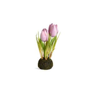 Tulpen in Erde, H:15cm, flieder