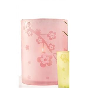 casaNOVA Windlicht FLOWER 18 cm Glas rosa