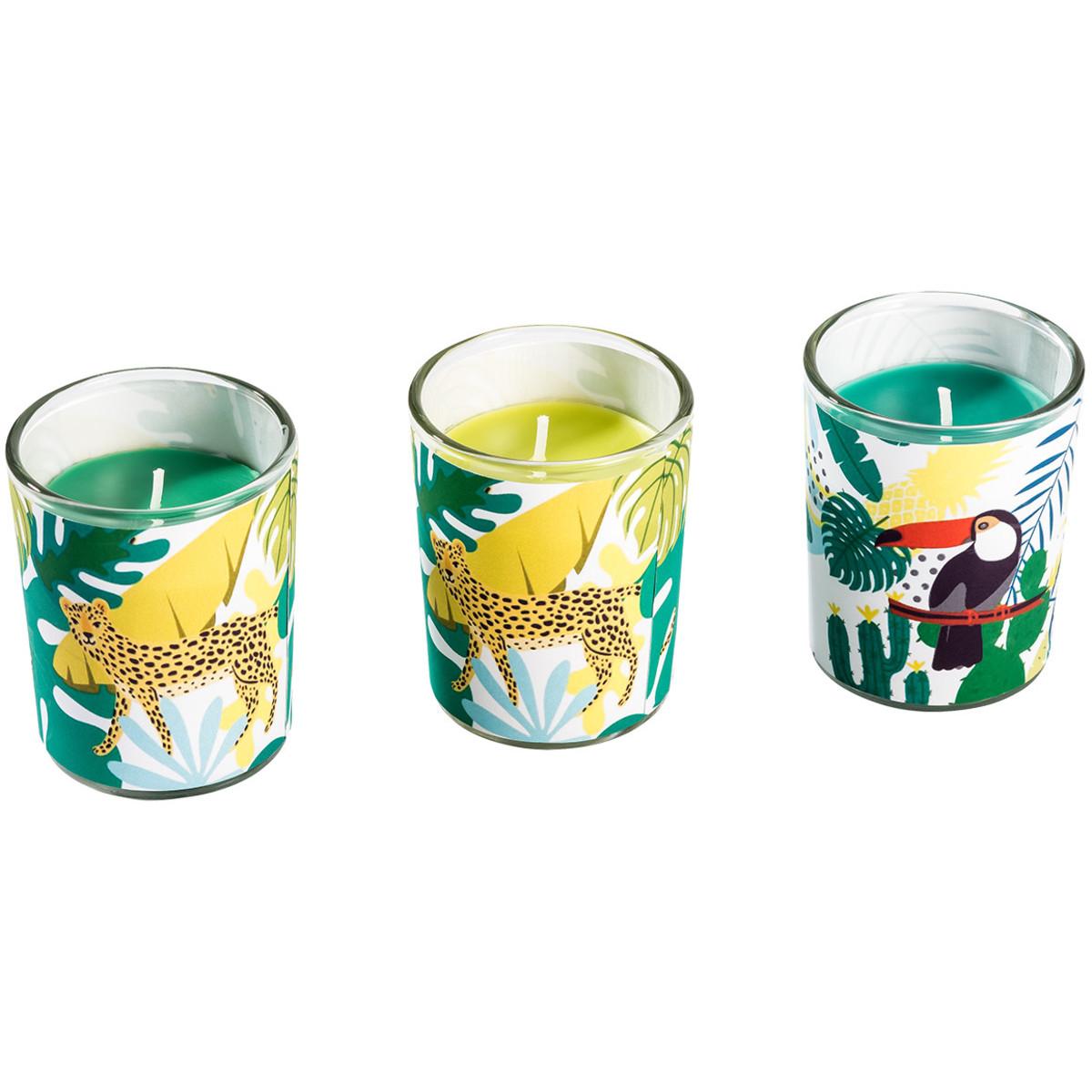 Bild 1 von 3 Kerzen im Glas mit Dschungel-Motiven