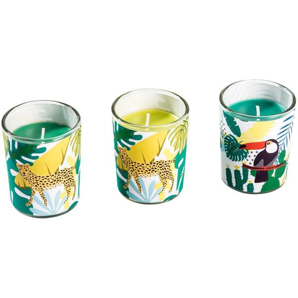 3 Kerzen im Glas mit Dschungel-Motiven