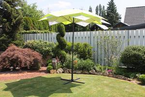 LECO - Schirm-Blüte, Farbe: grün / gestreift