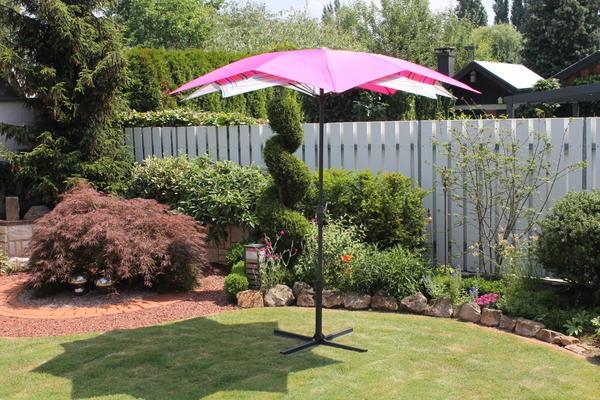 LECO - Schirm-Blüte, Farbe: pink / gestreift